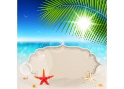 夏日海滩海星背景