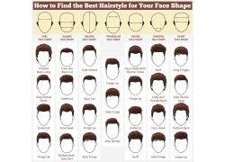 臉型與發型設計