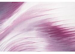 紫色花形海洋背景