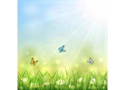 春天花朵蝴蝶