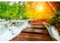 春天阳光小河风景