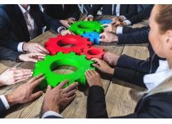 齿轮商务团队