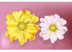 彩色花朵图案设计