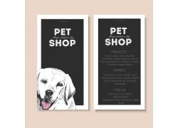 宠物医疗卡片设计