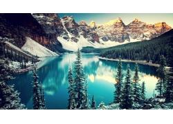 雪山湖水小树