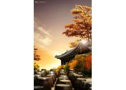 中式建筑秋天树风光