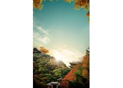 秋天树林中式建筑风光