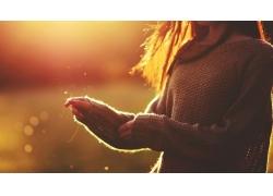 人,領域,美女,戶外的女人,日落,毛線衣,陽光45816