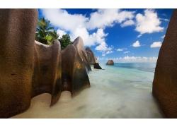 景观,海滩,岩,云,海,砂,棕榈树,塞舌尔,岛,热带,夏季239238