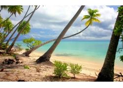 景观,海滩,棕榈树,岛,白色,砂,热带,海,云,灌木,夏季,法属波利尼