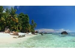 景观,海滩,棕榈树,海,岛,塞舌尔,砂,热带,夏季,岩,水,假期,云2539