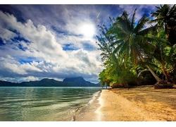 景观,海滩,海,棕榈树,云,岛,阳光,热带,波拉波拉岛,法属波利尼西