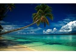 景观,海滩,热带,棕榈树,云,海,丘陵,早上,夏季,水,蓝色,白色,绿色