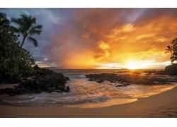景观,日落,砂,海滩,棕榈树,海,岩,云,热带,金227699