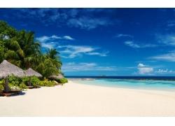 景观,马尔代夫,采取,白色,砂,海滩,海,棕榈树,热带,岛,夏季296627