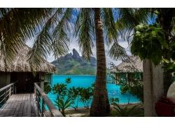 景观,热带,岛,海滩,采取,棕榈树,海,波拉波拉岛,假期,夏季,山2398