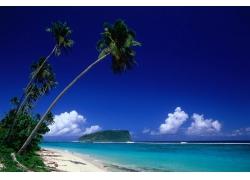 景观,棕榈树,海滩,海,云27442