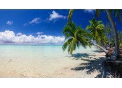 景观,海滩,白色,砂,岛,棕榈树,海,云,热带,夏季295309
