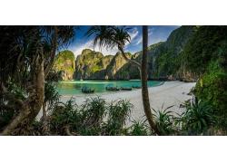 景觀,海灘,白色,砂,樹木,灌木,熱帶,船,早上,海,巖,石灰石,綠松石
