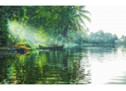 景观,湖,太阳光线,船,树木,棕榈树,薄雾,绿色,热带,水244437