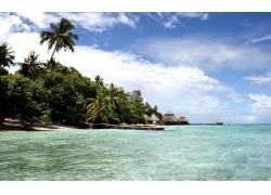 景观,海,棕榈树,海滩,云357607