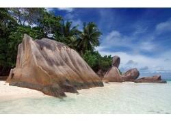 景观,海,海滩,热带,岩,棕榈树59176
