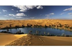景观,沙漠,绿洲,绿洲,棕榈树,撒哈拉67225