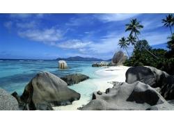 海,海滩,景观,棕榈树,岩178544