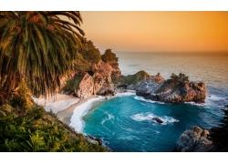 海,海滩,波浪,棕榈树,景观122281