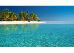 海滩,岛,景观,棕榈树194646