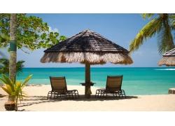 岛,海滩,雨伞,棕榈树,砂,海,热带,假期,景观,夏季,绿松石,绿色193