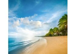 海滩,砂,海,棕榈树,云,水,景观,蓝色,绿色,白色,假期194633