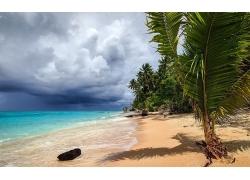 风暴,热带,海滩,海,砂,棕榈树,环礁,云,景观198641