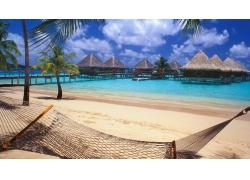 波拉波拉岛,大溪地,采取,海滩,吊床,棕榈树,砂,海,假期,热带,走道