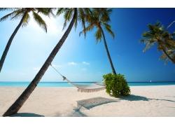 景观,吊床,海滩,白色,砂,棕榈树,海,蓝色,天空,马尔代夫,阳光,热