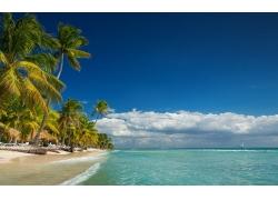 景观,岛,海滩,棕榈树,海,夏季,云,热带,假期243278