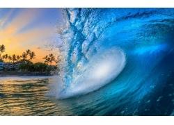 景观,波浪,海滩,夏威夷,建造,棕榈树,海,蓝色,水,太阳光线244442