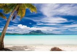 景观,波拉波拉岛,棕榈树,海滩,海,热带,岛,夏季,山,云,砂,假期240