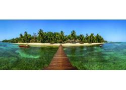 景观,码头,岛,棕榈树,海滩,船,夏季,热带,海351130