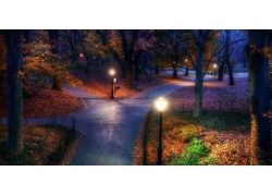 秋季,公園,紐約市,樹木,走道,路燈,晚間,景觀193205