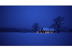 雪,屋,树木,晚,景观,灯火,冬季,圣诞7430