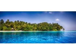 马尔代夫,热带,海滩,棕榈树,海,砂,水,夏季,异国情调,景观197333