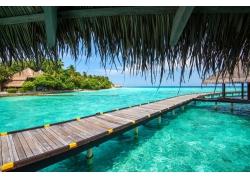 马尔代夫,采取,海,海滩,热带,棕榈树,夏季,假期,走道,绿松石,水,