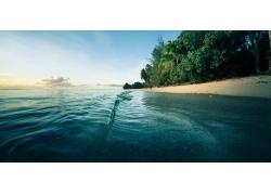 早上,海灘,海,砂,棕櫚樹,水,波浪,景觀,樹木193714