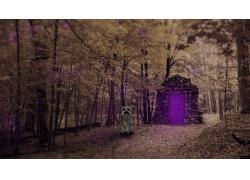 我的世界,爬行者,視頻游戲,實際,景觀,虛空門戶,數字藝術,樹木945
