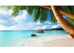 塞舌尔,海滩,砂,棕榈树,海,热带,夏季,异国情调,景观,云192847