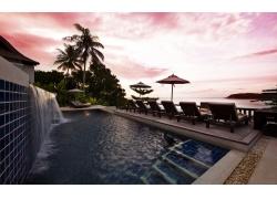 摄影,海,水,树木,游泳池,滨,热带,景观329337