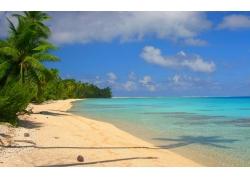 水,景观,热带,岛,海滩,白色,砂,棕榈树,海,云,绿松石270757