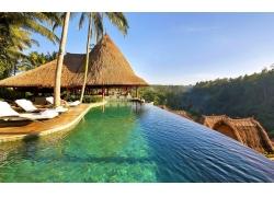 景观,游泳池,棕榈树,采取,森林,水,热带,异国情调238178