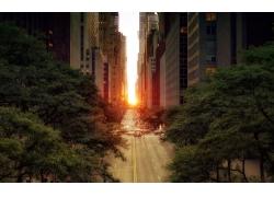 攝影,市,市容,建造,街,路,景觀,天空,日落,紐約市,樹木,城市的315